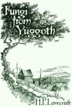 Fungi Book Cover Final